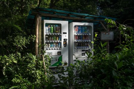 43 - Jungle dispenser, Kamakura (2018)