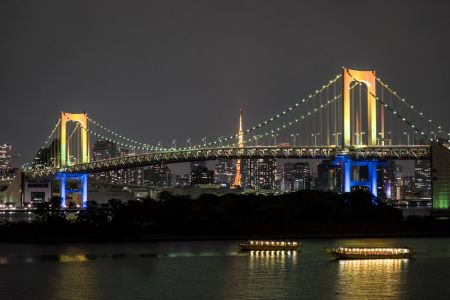 46 - Rainbow Bridge, Tokyo (2016)