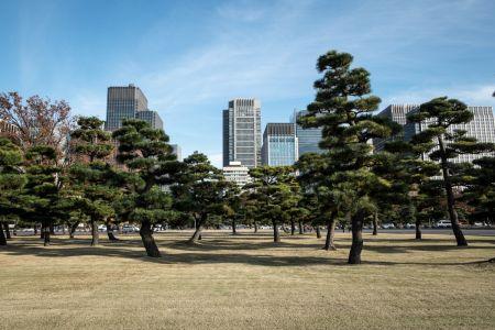 09 - Tokyo
